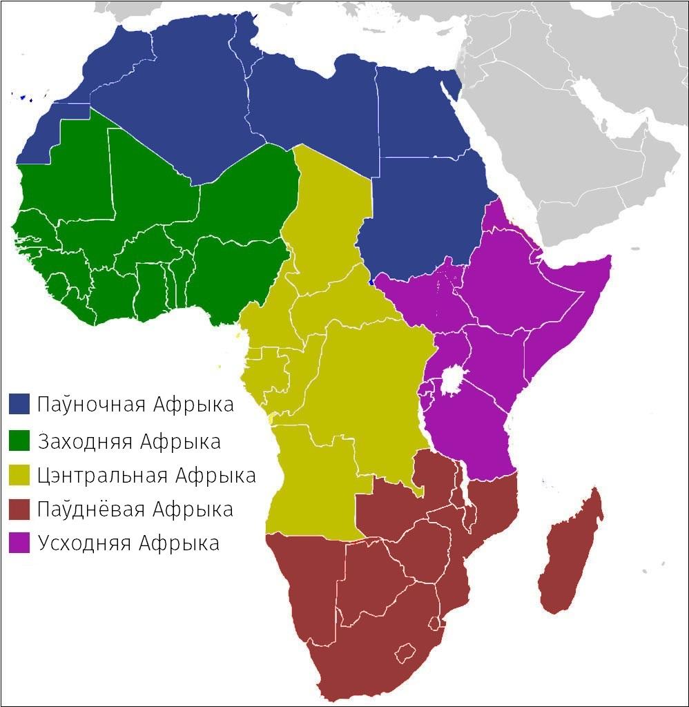 by9-dziwnaja-raznastajnasc-afrykanskih-scjagow_15
