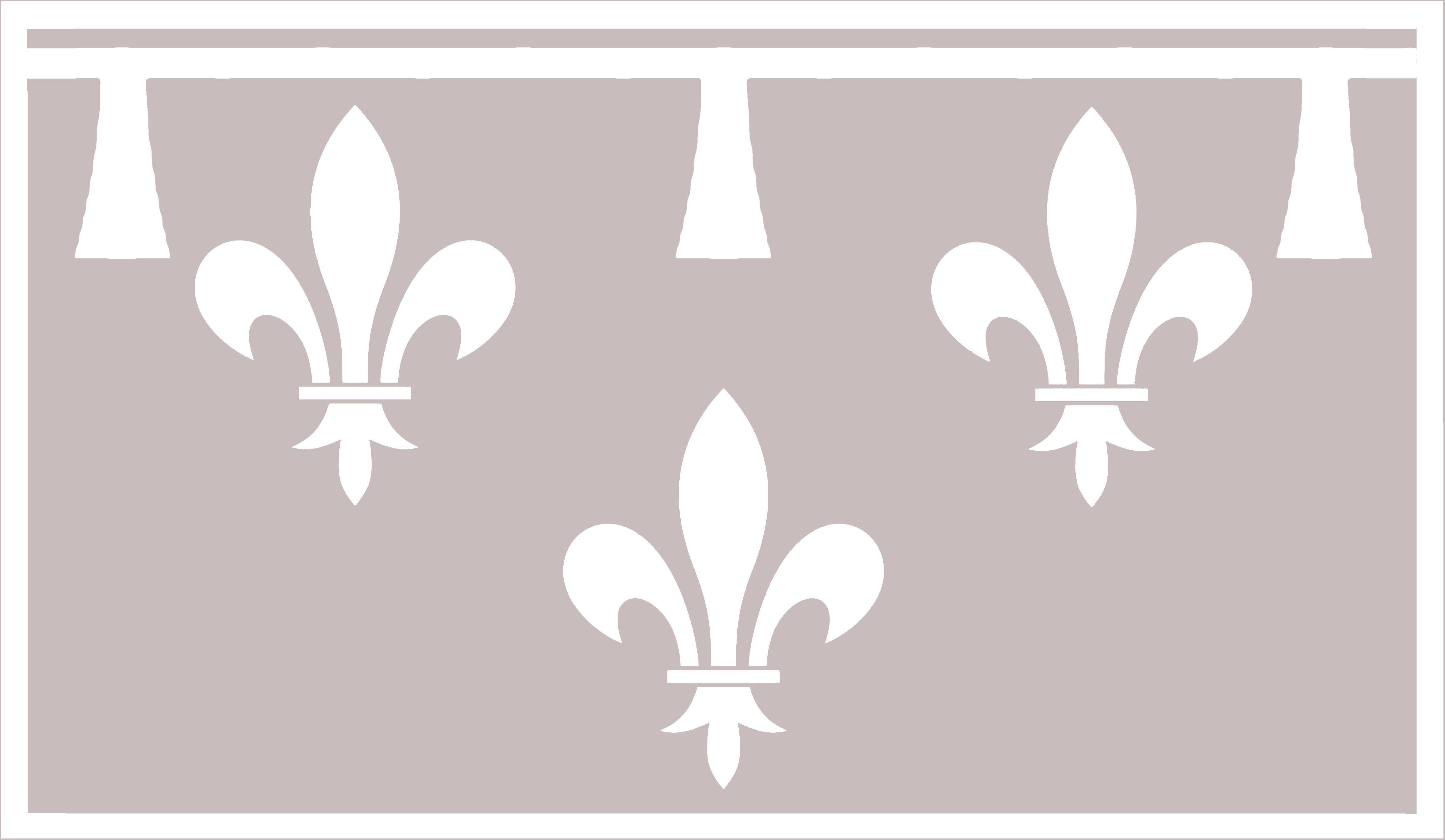 en51-flags-of-france_14