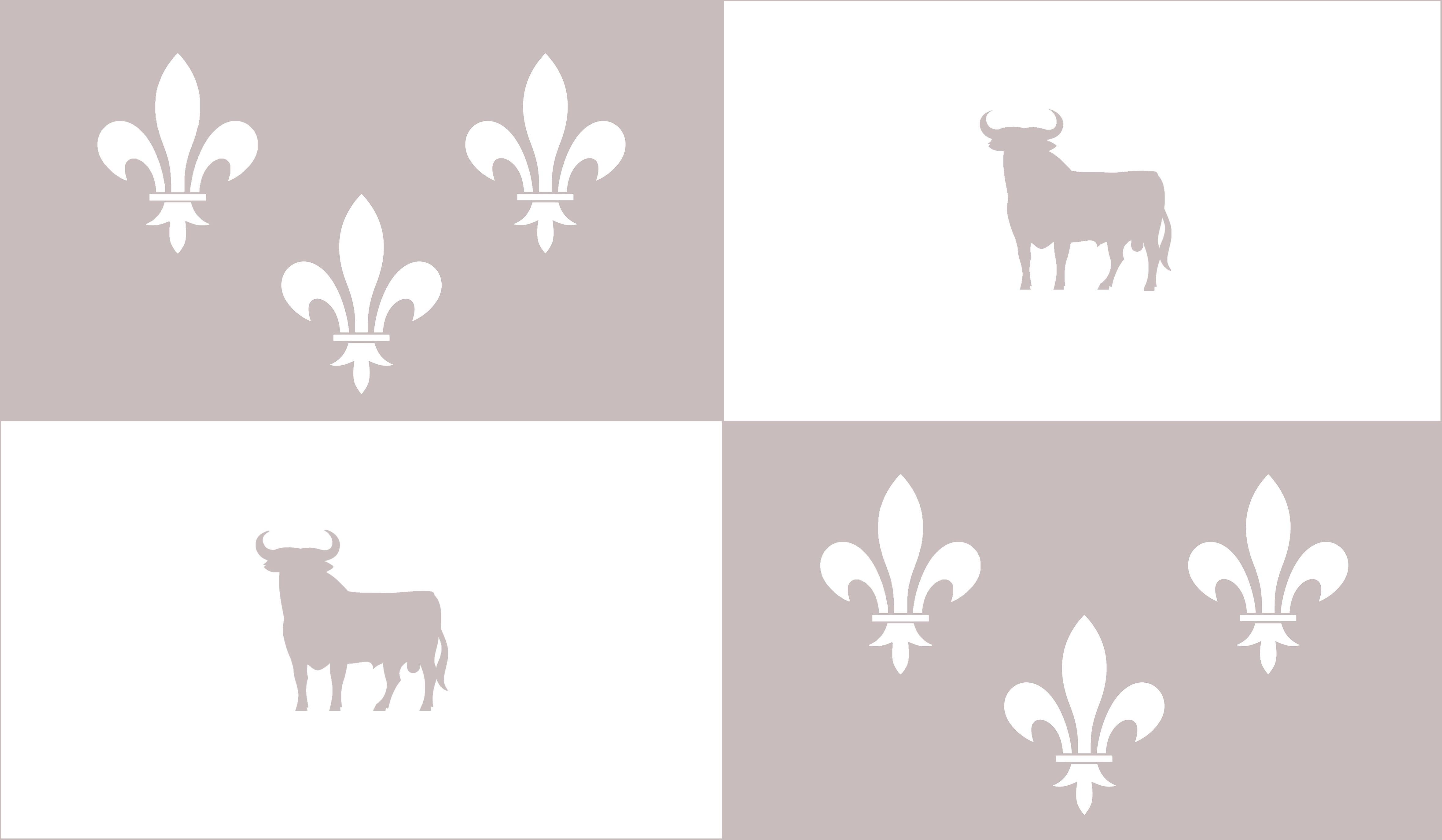 en51-flags-of-france_16